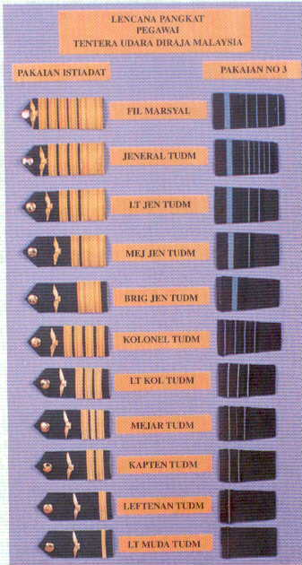 British Air Force Rank Insignia